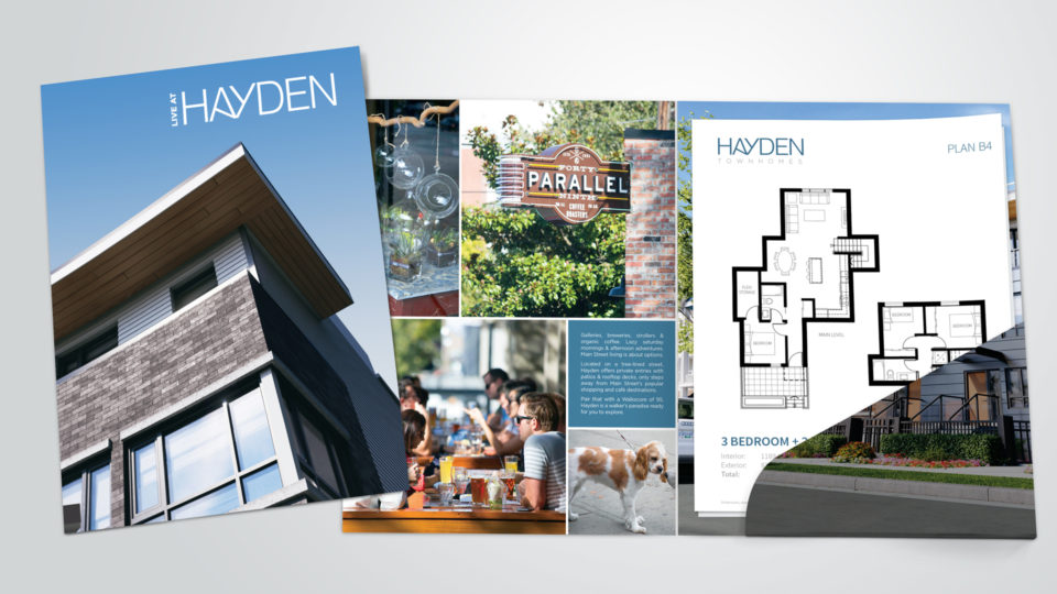 custom development marketing - Hayden